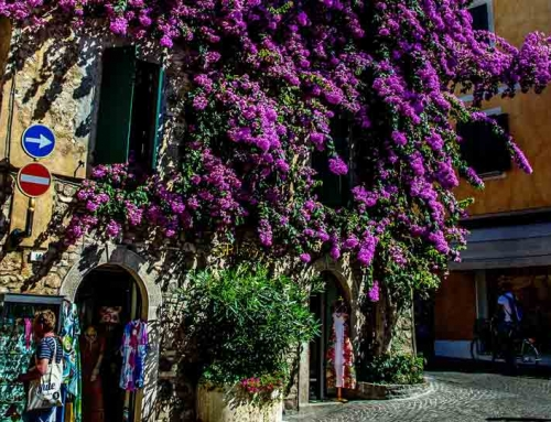 The purple house in Sirmione