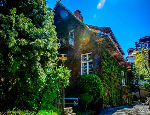 The Little Secrets of Sofia – Part II